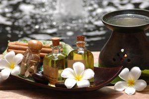 طب گیاهی سنتی